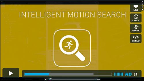 17 motion search player